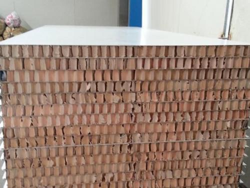 纸蜂窝净化板